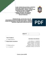 06. Inf Final SERCOM 20190310 (Reparado)