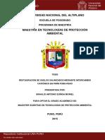 restauracion.pdf