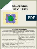adecuacionescurriculares-091106182351-phpapp02