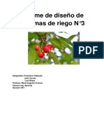 Riego Vivanco 3