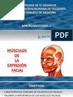 ''Músculos de La Expresión Facial