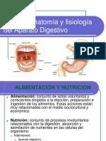 Aparato_Digestivo Exposiciónclases