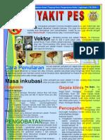 Poster Penyakit Pes, Bidang PRL Tahun 2010