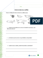 articles-29442_recurso_doc.doc