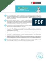 Ideas fuerza mod6.pdf