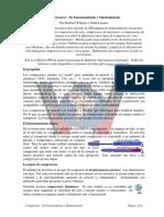 mant compresores.pdf