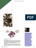 296907055-Ogum-Exu-Xoroque-o-Rei-Do-Ouro-e-Da-Magia.pdf