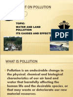 Assignment on Pollution