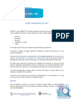 Modelo internacional del PMI