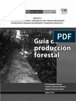 Technical report - Guia de produccion forestal.pdf