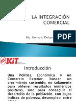 Integracion Comercial