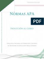 Normas_APA_final.pdf