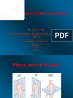20160907-1100_L-Kiss-Anna_eng_Anatomy-nomenclature-orienta.pptx