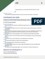 ActiveReports13.pdf
