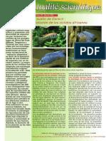 fas_315_es.pdf