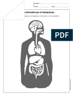 cn_cidelavida_5y6B_N11.pdf