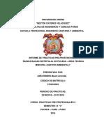 Universidad Andina Autoguardadooooo (1)