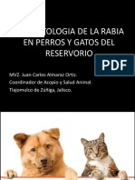 6 Fisiopatologia Rabia Perros y Gatos SESA JAL