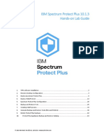 SPP 10.1.3 Hands-on Lab Guide Eng.r2.pdf