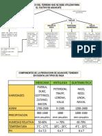 Planeacion de La Produccion Del Cultivo de Aguacate