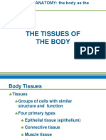 Body Tissue Lesson 2.pptx