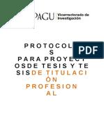 12.-PROTOCOLO-TESIS-PREGRADO-UPAGU.docx