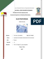 8vo Informe de Laboratorio de Analisis Instrumental de Los Alimentos Terminado y Entregado