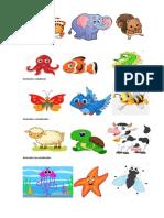 Animales Terrestre1