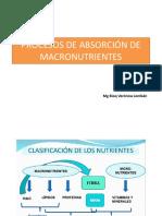 Metabolismo de Los Glúcidos u9 2018