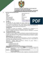 silabus problematica.pdf