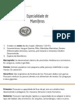 Apresentação sem título-1.pdf