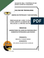 proyecto lab lodos.docx