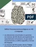 4 EVALUACIÓN NEUROPSICOLOGICA DEL LENGUAJE  (HD).ppt