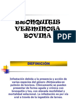 Semana 16 Bronquitis Verminosa