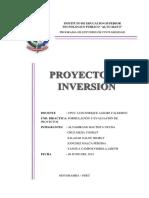 PROYECTO DE INVERSION.docx