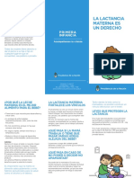 triptico_lactancia.pdf