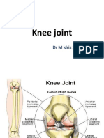 Femerotibial Joint