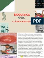 bioq.9ÁCIDOS NUCLEICOS.pdf