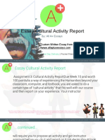 Essay Cultural Activity Report