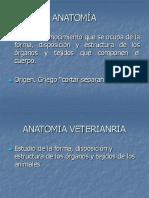 1 introduccios a la anatomia TERMINOLOGÍA ANATÓMICA.ppt