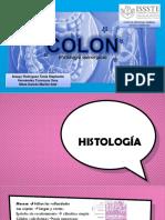 patologia quirurgica de colon