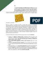 La economía de fichas.docx