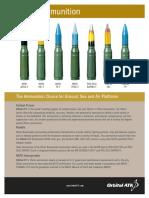 25mm_Fact_Sheet.pdf