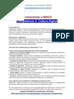 Conhecendo a BNCC - Competência 5