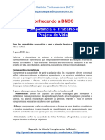 Conhecendo a BNCC - Competência 6