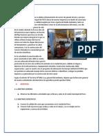 Informe de Camal de Pisco