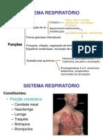 Aula Respiratorio
