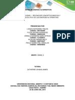 Fuentes de Energía Alternativas -Colaborativo (1)