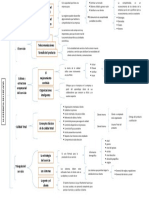 mapa sinoptico.pdf