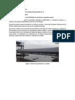reporte quincenal 1.docx